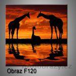 Moderní obraz do bytu 1D 25x25cm F-120