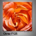 Moderní obraz do bytu 1D 25x25cm F-125