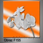 Moderní obraz do bytu 1D 25x25cm F-155