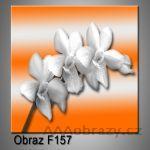 Moderní obraz do bytu 1D 25x25cm F-157