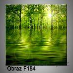 Moderní obraz do bytu 1D 25x25cm F-184