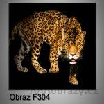Moderní obraz do bytu 1D 25x25cm F-304