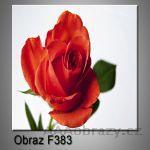 Moderní obraz do bytu 1D 25x25cm F-383