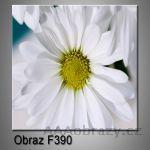 Moderní obraz do bytu 1D 25x25cm F-390