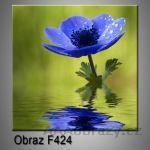 Moderní obraz do bytu 1D 25x25cm F-424