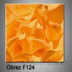 Moderní obraz do bytu 1D 30x30cm F-124