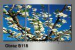 Obraz na plátně 3D 75x35cm B-118