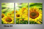 Obraz na plátně 3D 105x70cm B1