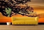 Moderní fototapeta na zeď vzor 52 strom, západ slunce
