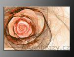 LED obraz 100x70cm vzor 674 abstrakce, růže