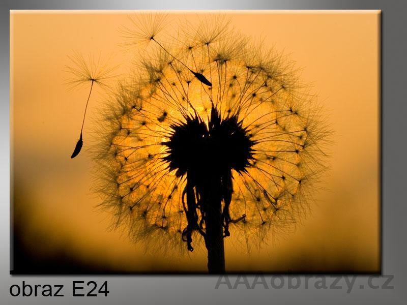 Moderní obraz do bytu 1D 50x30cm E-24