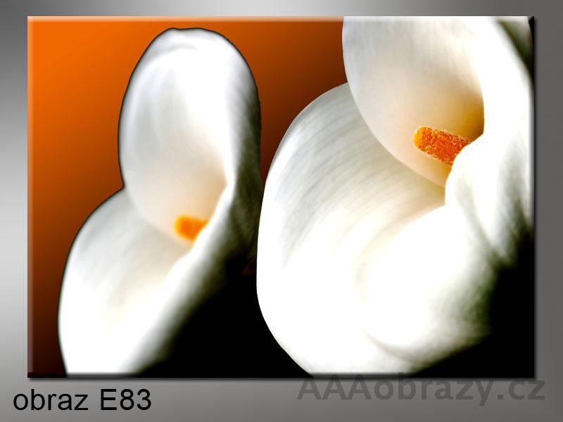 Moderní obraz do bytu 1D 50x30cm E-83
