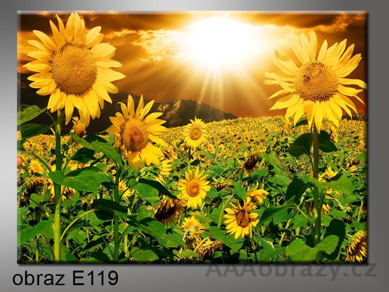 Moderní obraz do bytu 1D 120x80cm E-119