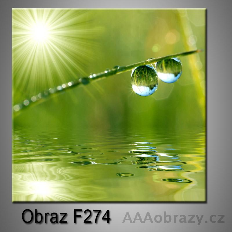 Obraz F-274