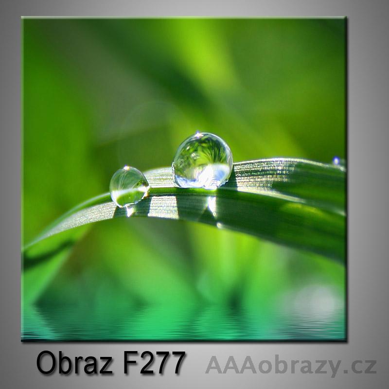Obraz F-277
