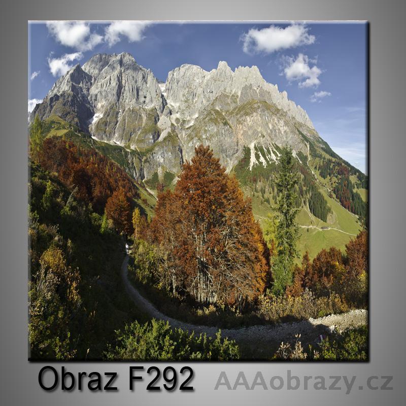 Obraz F-292