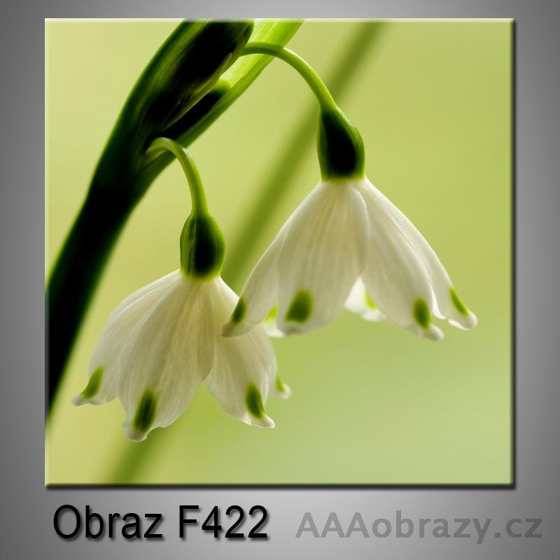 Obraz F-422