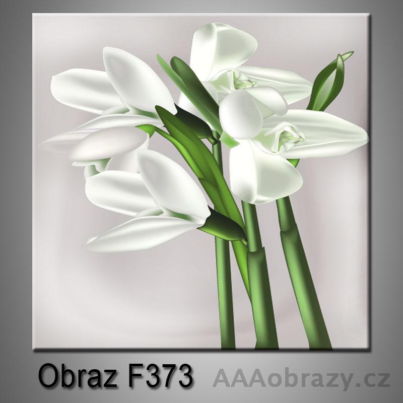 Obraz F-373