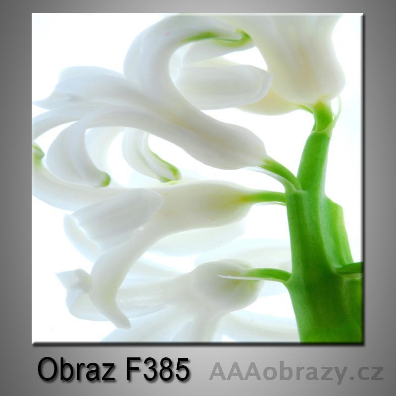 Obraz F-385