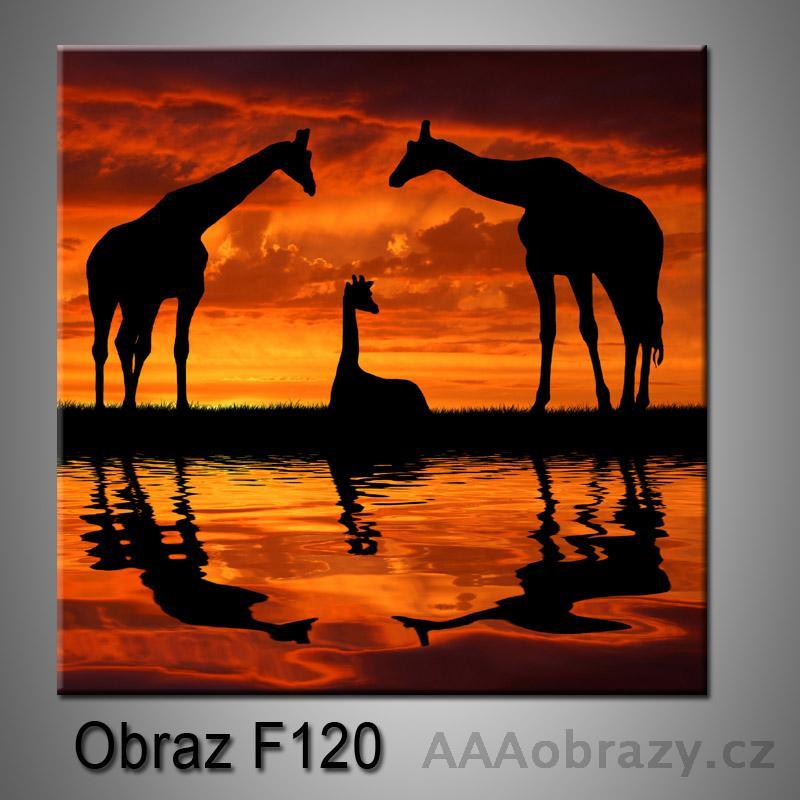 Obraz F-120