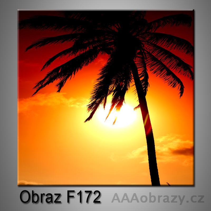 Obraz F-172