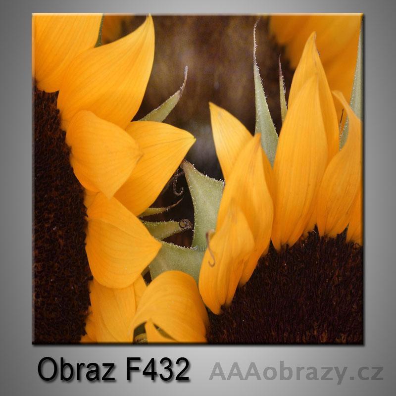Obraz F-432