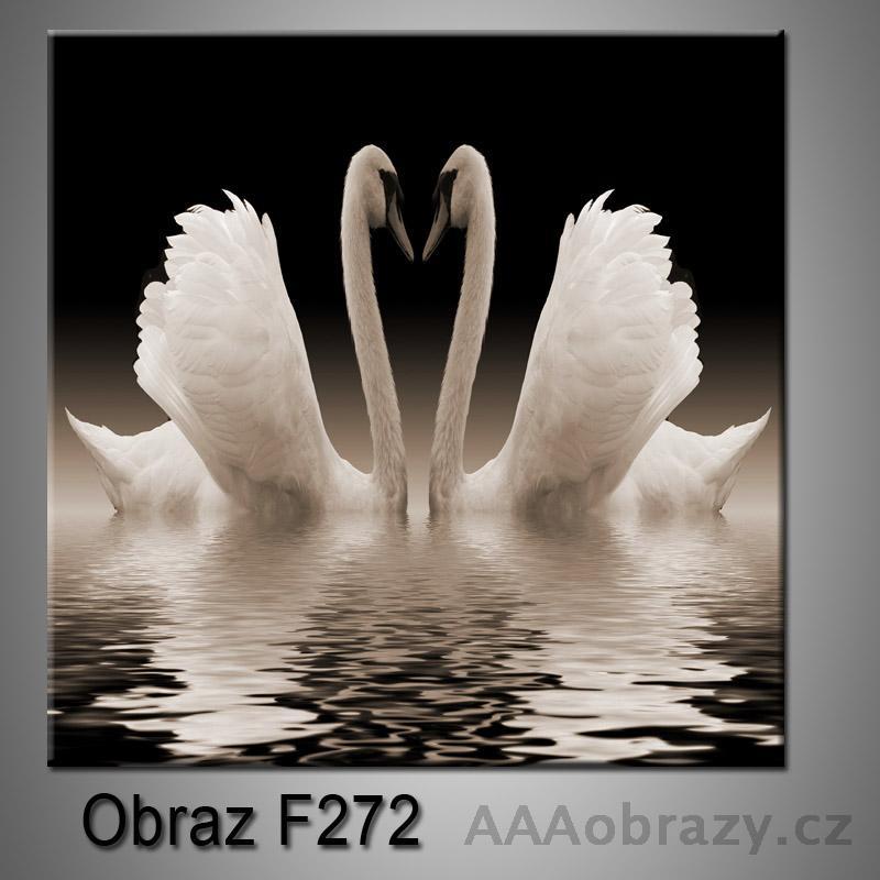 Obraz F-272