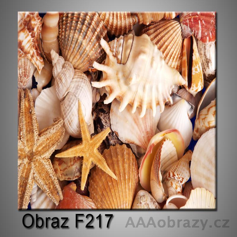 Obraz F-217
