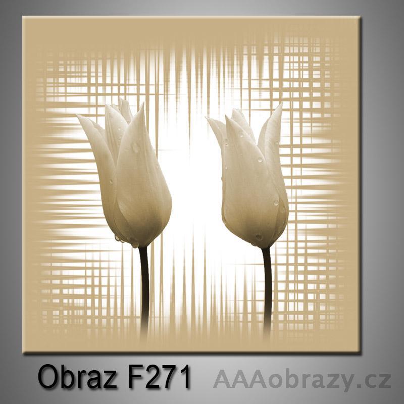 Obraz F-271