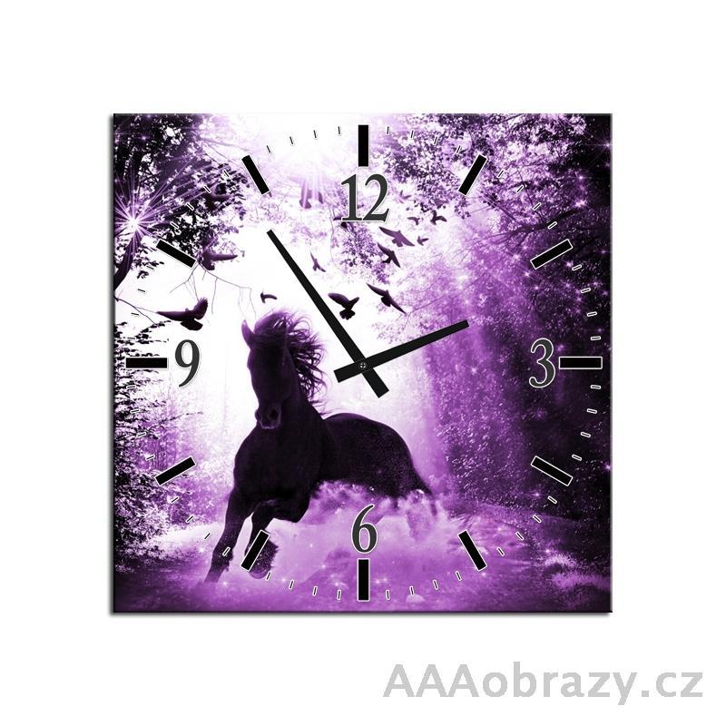 Obraz s hodinami 30x30cm vzor f003116f3030c