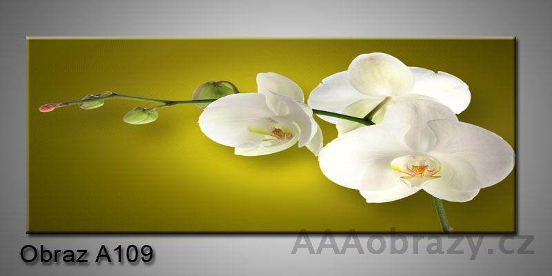 Moderní obraz 1D na plátně 100x40cm A109