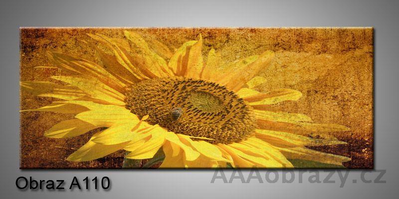 Moderní obraz 1D na plátně 100x40cm A110