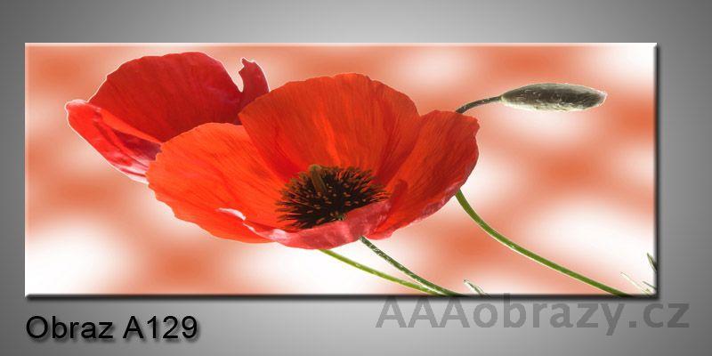 Moderní obraz 1D na plátně 100x40cm A129