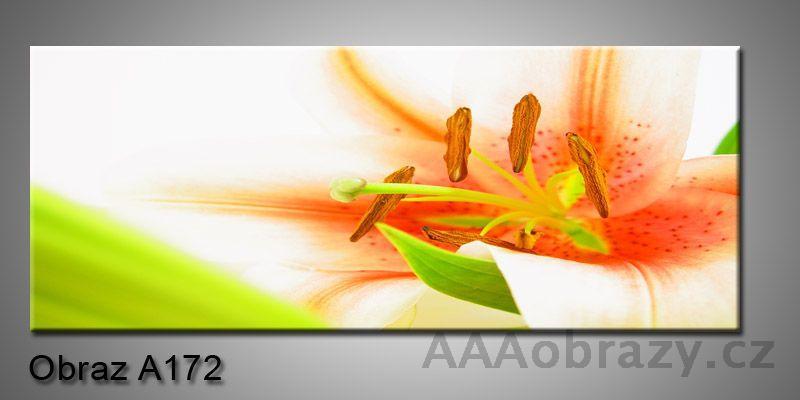 Moderní obraz 1D na plátně 100x40cm A172