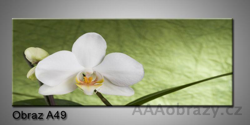 Moderní obraz 1D na plátně 100x40cm A49