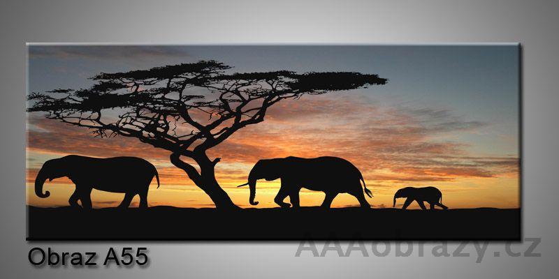 Moderní obraz 1D na plátně 100x40cm A55