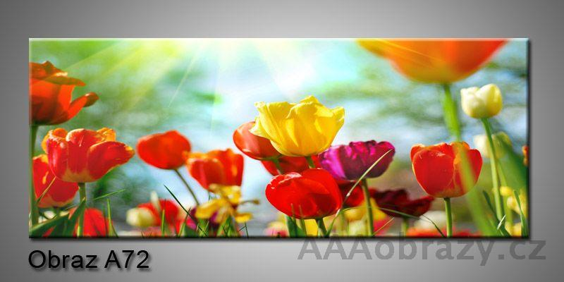 Moderní obraz 1D na plátně 100x40cm A72