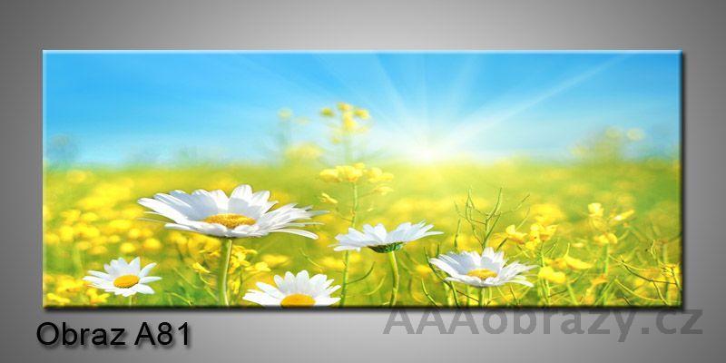 Moderní obraz 1D na plátně 100x40cm A81