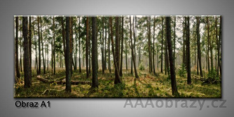 Moderní obraz 1D na plátně 150x70cm Panorama A1