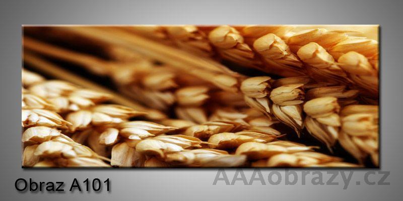 Moderní obraz 1D na plátně 150x70cm Panorama A101