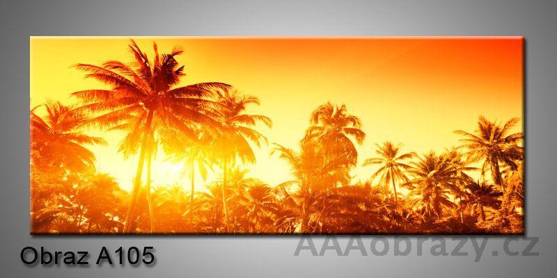 Moderní obraz 1D na plátně 150x70cm Panorama A105