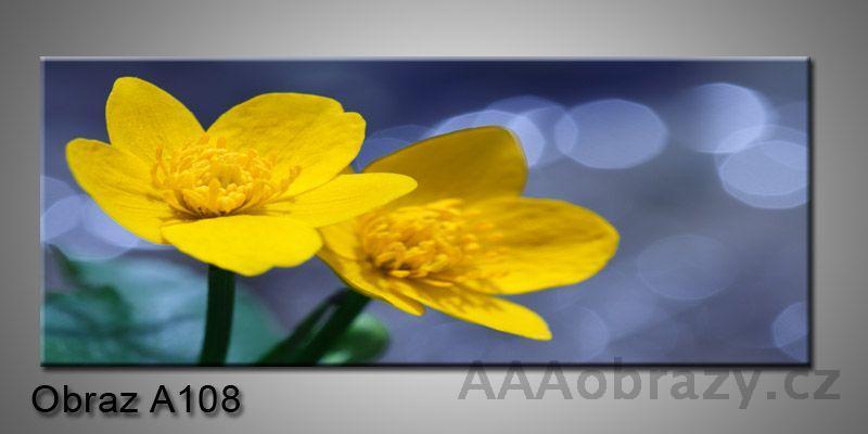Moderní obraz 1D na plátně 150x70cm Panorama A108