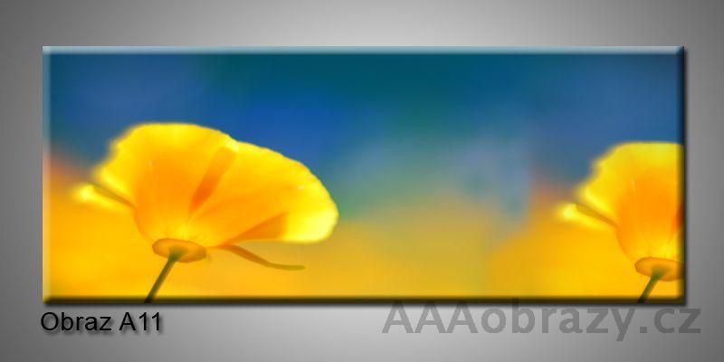 Moderní obraz 1D na plátně 150x70cm Panorama A11