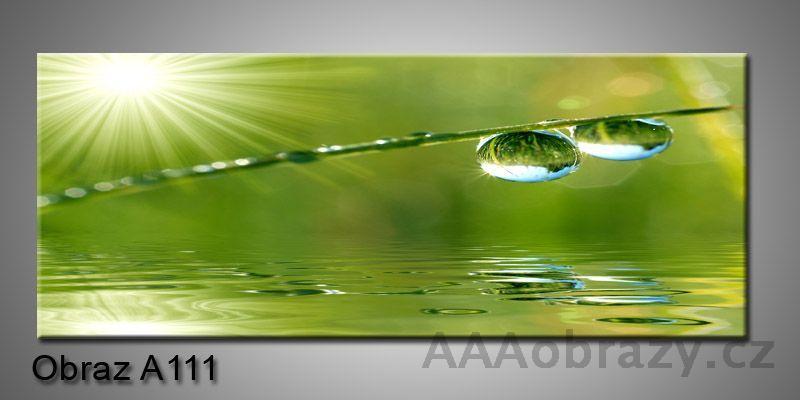 Moderní obraz 1D na plátně 150x70cm Panorama A111