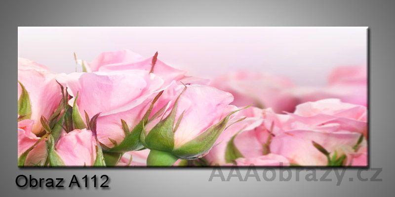 Moderní obraz 1D na plátně 150x70cm Panorama A112