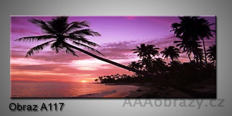 Moderní obraz 1D na plátně 150x70cm Panorama A117