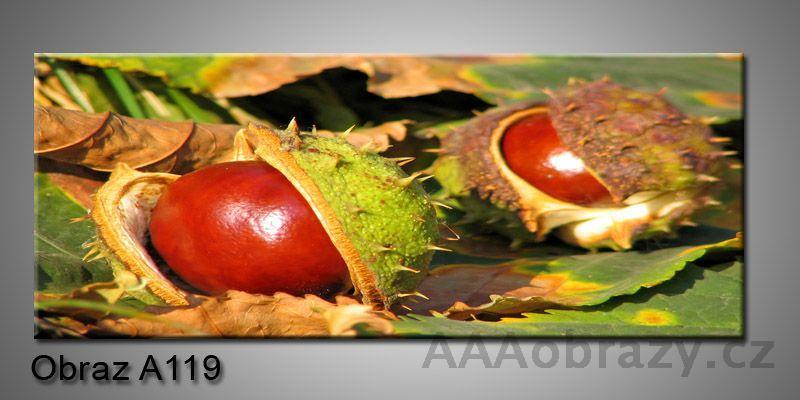 Moderní obraz 1D na plátně 150x70cm Panorama A119