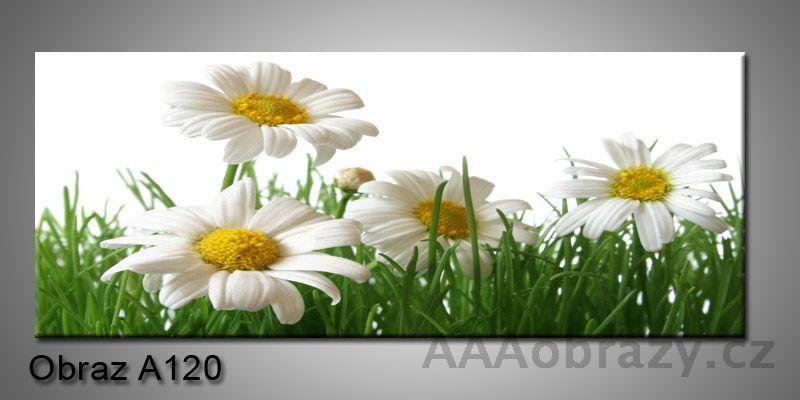Moderní obraz 1D na plátně 150x70cm Panorama A120