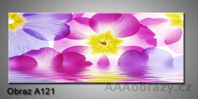 Moderní obraz 1D na plátně 150x70cm Panorama A121