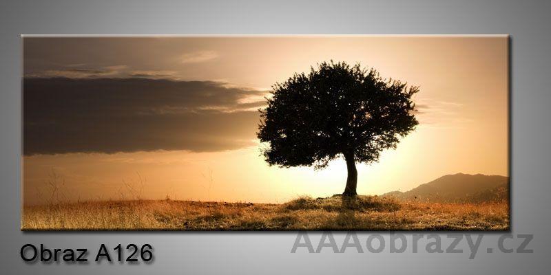 Moderní obraz 1D na plátně 150x70cm Panorama A126